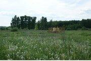 Земля ИЖС 3,5 га в 40 км от Н.Новгорода, рядом хвойные леса - Фото 3
