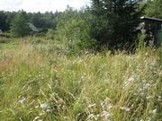 Участок в садоводстве в 8 км от Выборга Цена 470 т.р. - Фото 2