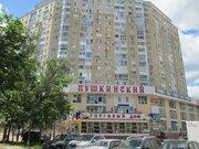 Однокомнатная квартира в Пушкино, ул.Надсоновская,24 - Фото 1