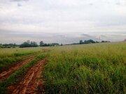 Земельный участок 25 соток д. Беляево Чеховский район - Фото 4