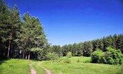 Красивый участок на границе леса у берега озера - Фото 2