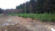 """Участок в экологически чистом коттеджном поселке """"телеши-1"""" - Фото 4"""