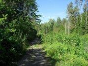 Живописный участок в Шарапово 12 соток - Фото 1