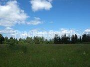 Участок на реке Озерна в окружении леса - Фото 3