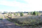 Участок в новом ДНП Лесное - 85 км Щелковское шоссе - д.Курбатово - Фото 5