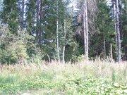 Киевское ш. 20 км от МКАД, участок 15 сот, Новая Москва, Первомайское - Фото 1