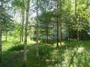 Продается дом + баня на 30 сотках земли в лесу. - Фото 2