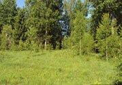 Земельный участок, Маревский район, деревня Малое Дёмкино - Фото 2