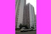 Купить квартиру Калужская Беляево Александр 89671788880, Купить квартиру в Москве по недорогой цене, ID объекта - 319438945 - Фото 17