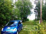 Участок у леса в районе станции Рябинино. СНТ «Фобос». - Фото 4