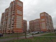 Центр, ул.Калинина, видовая двухкомнатная квартира - Фото 1