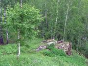 40 гектаров. Волоколамский район. Кругом лес. - Фото 2