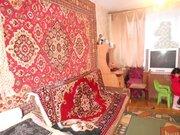 Трёхкомнатная квартира в посёлке Сокольниково. - Фото 4