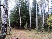 Продается участок в Горетов 30 сот. с выходом в лес. - Фото 2