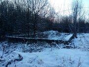Два земельных участка 5+5 соток, СНТ Березки, Лучинское, Толбино - Фото 4