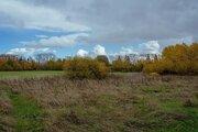 50 соток в Кирики-Улитах - Фото 2