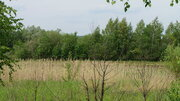 Участок у леса Новорижское ш. 40 км - Фото 3