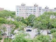 3-комнатная квартиира на Гамарника, ср.эт - Фото 5