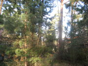 Продаю дом 220 м2 в п.Быково, уч-к 15 сот, сосны, ПМЖ, ИЖС, озеро, лес - Фото 5