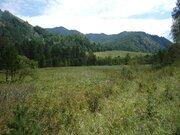 Элитный изолированный участок по р.Чемал - Фото 5