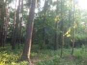 Продается уникальный лесной участок 12 сот. правильной формы в Кратово - Фото 1