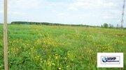 Продажа земельного участка 31сот. в д. Калистово Волоколамского района - Фото 4