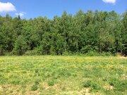 Земельный участок 13,15 сот. в кп Лисичкин лес - Фото 2