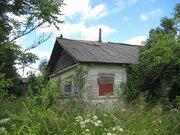 2 гектара со старым домом в д. Богданово Пушкиногорского района - Фото 2