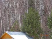 Земельный участок 12 соток Тульская область, Заокский район, д. Николь - Фото 5