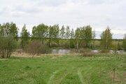 Продаю участок сельхозназначения дешево 4,5 га 98 км по Щелковскому ш - Фото 2