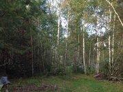 Продается земельный участок 15 соток знп с пропиской на берегу реки - Фото 5