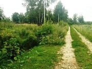 Земельный участок 25 соток д. Перхурово Чеховский район - Фото 2