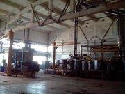 Производственное специализированное здание складов, торговых баз, баз, Продажа производственных помещений в Минске, ID объекта - 900128831 - Фото 3