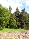 Лесной земельный участок деревня Садки - Фото 2