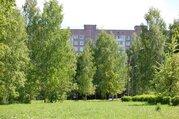 Продается большая четырехкомнатная квартира 74 кв.м, Купить квартиру в Санкт-Петербурге по недорогой цене, ID объекта - 315501467 - Фото 26