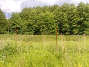 Продается земельный участок, д.Беляево - Фото 2