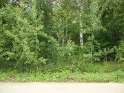 Лесной участок 12 соток в Новогрязново на Клязьминском водохранилище - Фото 2
