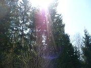 Участок в д.Мерлеево, Чеховского района - Фото 2