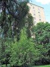 Двухкомнатная квартира у метро вднх - Фото 2