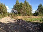 Продается земельный участок 15 соток знп с пропиской на берегу реки - Фото 2