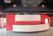 Под клуб, ресторан, торговлю в центре у Невского пр, тк Перинные ряды - Фото 3