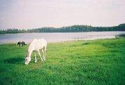 Земельный участок в д. Мыленки - Фото 3