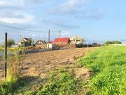 Участок 15 соток д. Комаровка 40 км от МКАД по Рогачевскому шоссе - Фото 1