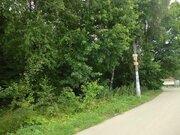 Лесной участок 12 соток в Новогрязново на Клязьминском водохранилище - Фото 3