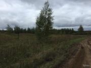 Отличный участок около леса в с. Пирочи. Коммуникации рядом. - Фото 3