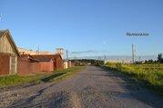 Продам участок сельхозназначение в Гатчинском р-не п.Елизаветино - Фото 2