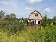 Дом в д.Мамасево, Клепиковского района, Рязанской области. - Фото 4