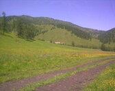 740 соток на Горном Алтае - Фото 3