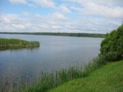 Участок 25 сот. д.Елгозино, Клинский р-он, 95 км. от МКАД - Фото 5