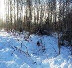Участок 7,5 соток в Солнечногорске - Фото 4